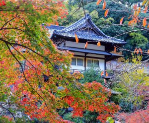 富士屋旅館(湯河原)
